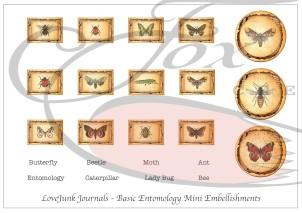 Entomology Mini Embelishments WM