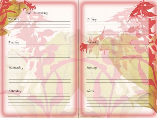 Freebie planner page