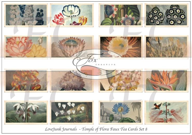 Faux Tea Cards 8 WM